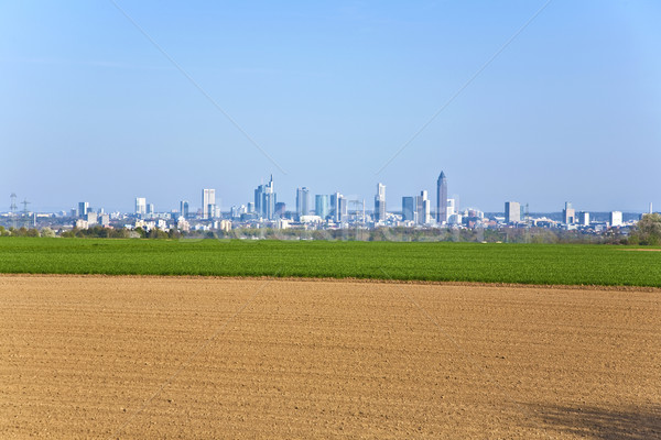 Vers veld stadsgezicht Frankfurt horizon boom Stockfoto © meinzahn
