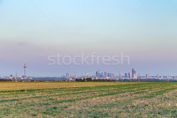 View Francoforte sul Meno skyline notte campi costruzione Foto d'archivio © meinzahn