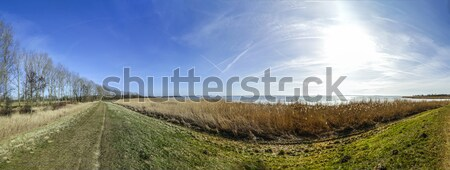 Balti-tenger természet fák mező színpad házak Stock fotó © meinzahn
