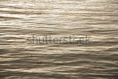 Mooie zee mooie harmonisch structuur Stockfoto © meinzahn