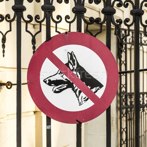 Foto stock: Assinar · cães · proibido · velho · cerca