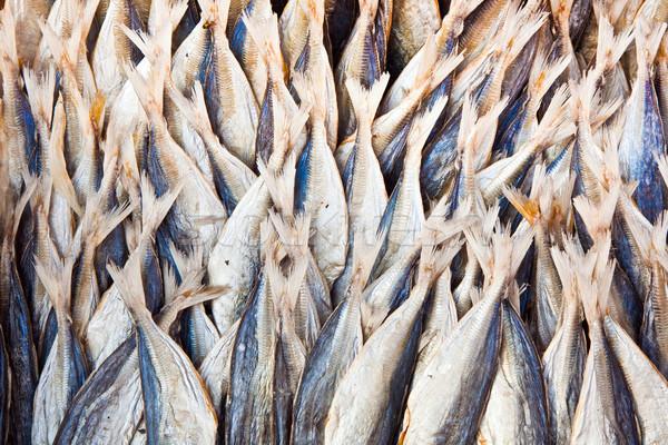 stockfish at the market Stock photo © meinzahn