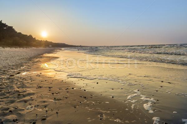 Naplemente tengerpart Balti-tenger részlet természet Stock fotó © meinzahn