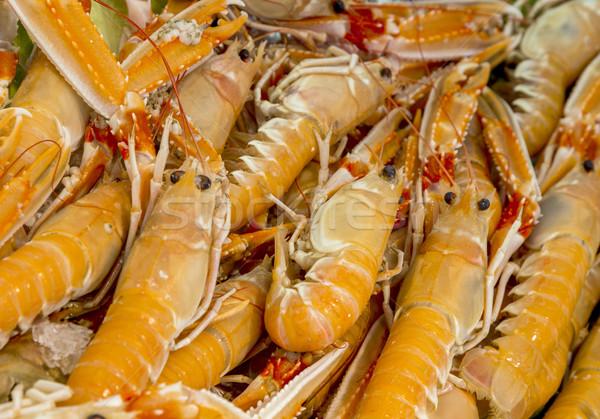 全体 新鮮な 王 エビ 魚 市場 ストックフォト © meinzahn