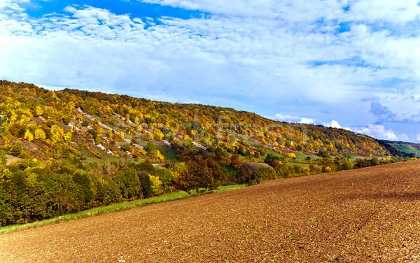 Stockfoto: Heuvels · vallei · rivier · landschap · licht