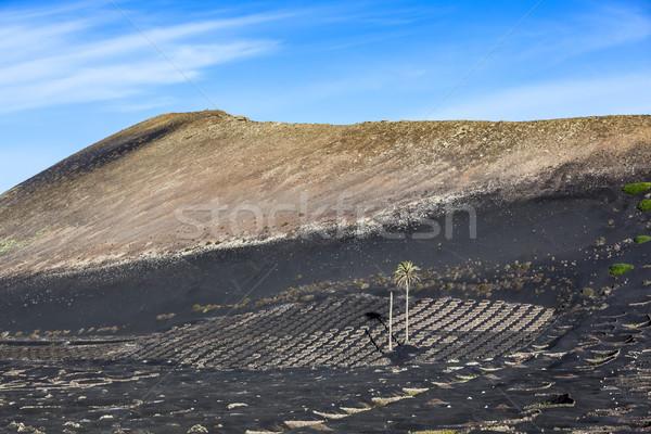 La vulcânico solo famoso parede natureza Foto stock © meinzahn