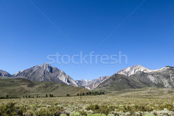 view to Mount Baldwin Stock photo © meinzahn