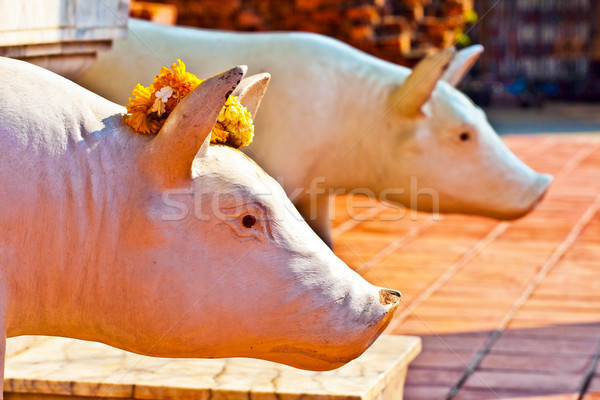 beautiful statue of pigs as gods dressed with flowers  in temple Stock photo © meinzahn