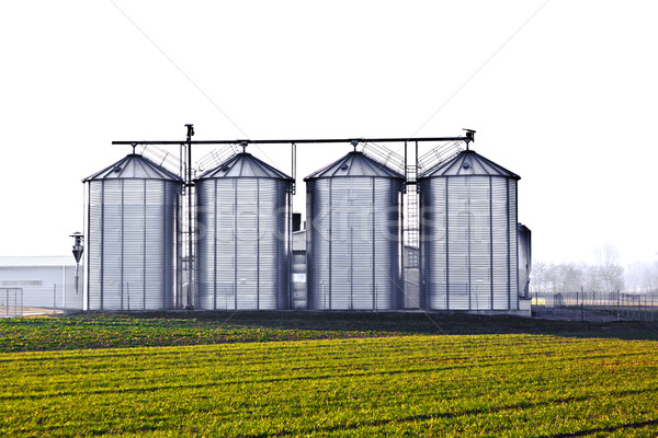 silver silos in the field Stock photo © meinzahn
