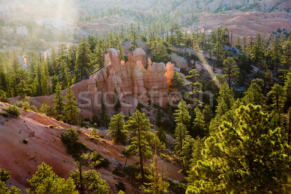 beautiful landscape in Bryce Canyon with Stone formations and tr Stock photo © meinzahn
