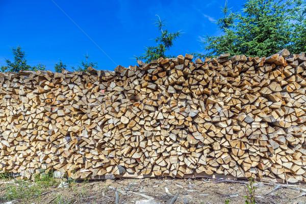 Houten Blauw heldere hemel hemel hout natuur Stockfoto © meinzahn