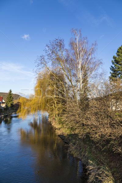 view to river Unstrut at Oldisleben Stock photo © meinzahn