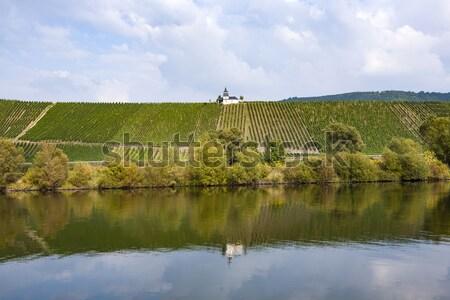 Vigneto fiume natura mondo bellezza chiesa Foto d'archivio © meinzahn