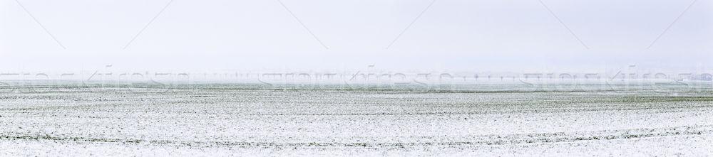 rural panorama landscape at Bad Frankenhausen in winter Stock photo © meinzahn