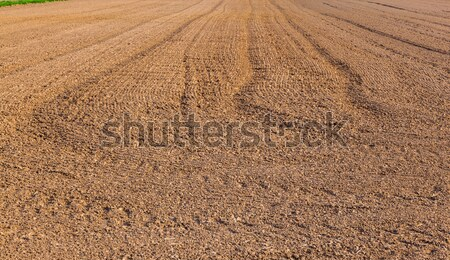 Stock photo: mark of tire on field