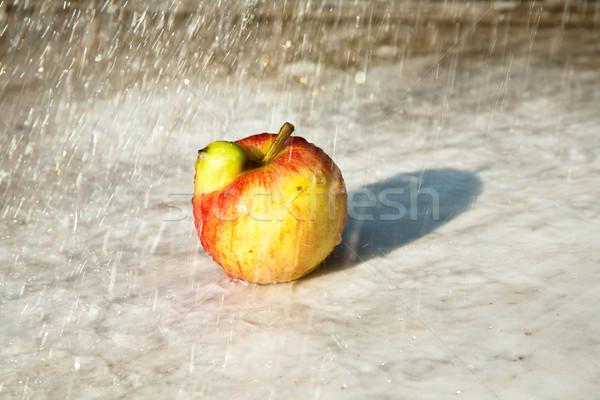 Almák ad fantázia esély friss érdekes Stock fotó © meinzahn
