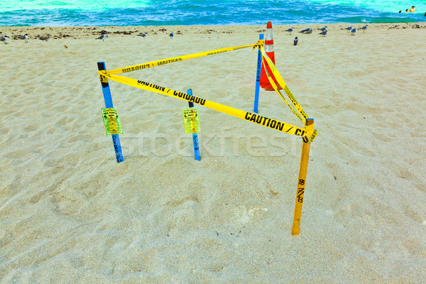 Net zand strand beschermd natuur zee Stockfoto © meinzahn