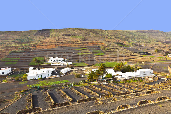 farmhouse in rural hilly area in Lanzarote  Stock photo © meinzahn