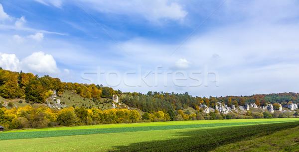 Rotsformatie twaalf bos bomen najaar planten Stockfoto © meinzahn