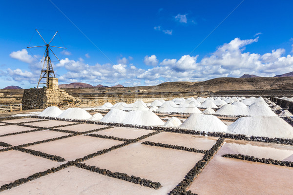 salt piles in the saline of Janubio in Lanzarote with old toteen Stock photo © meinzahn
