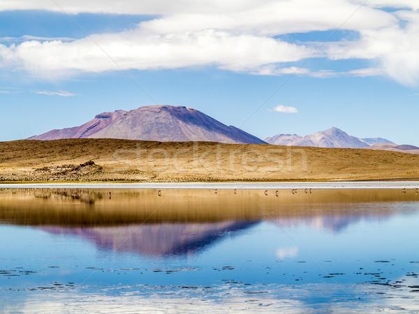 Laguna Kara salt lake with reflection of the mountain, Eduardo A Stock photo © meinzahn