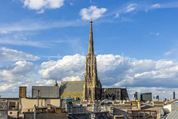 Kilátás katedrális Bécs délután fény Stock fotó © meinzahn