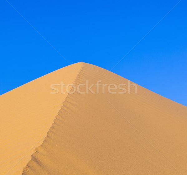 Duin zonsopgang woestijn mooie zon landschap Stockfoto © meinzahn