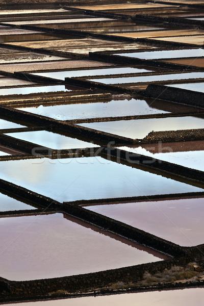 Tuz rafineri su manzara deniz model Stok fotoğraf © meinzahn