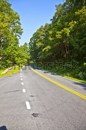 Beautiful scenic country road curves through Shenandoah  Nationa Stock photo © meinzahn