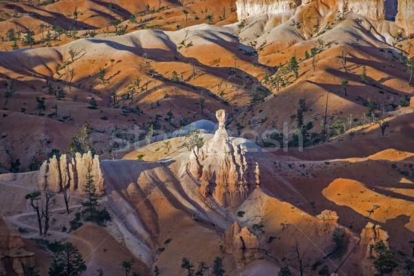 Bryce Canyon in sunrise Stock photo © meinzahn