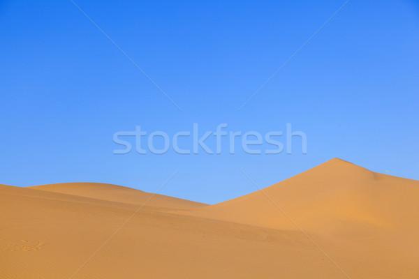 砂丘 日の出 砂漠 美しい 太陽 風景 ストックフォト © meinzahn