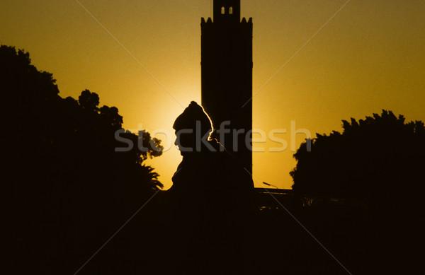 Profile homme coucher du soleil Maroc Photo stock © meinzahn