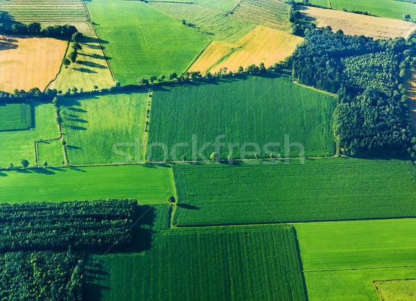 Luchtfoto groene velden water landschap veld Stockfoto © meinzahn