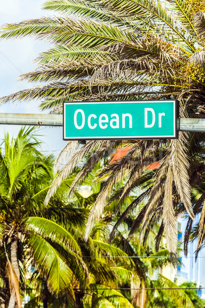 street sign at Ocean drive in Miami Stock photo © meinzahn