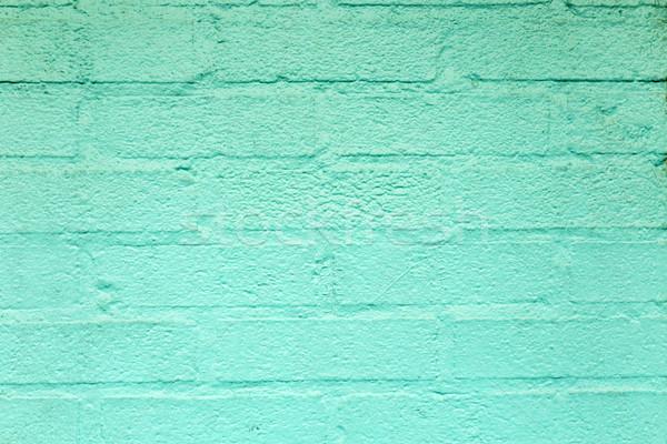 Verde harmônico parede de tijolos américa casa parede Foto stock © meinzahn