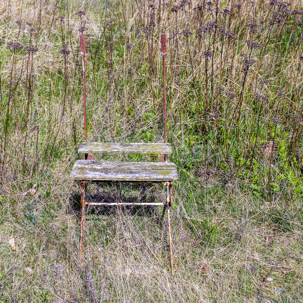 old rotten wooden chair at a meadow Stock photo © meinzahn