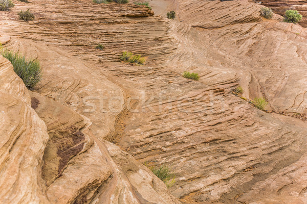detail of rocks at horseshoe bend in Page Stock photo © meinzahn
