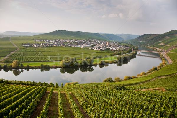 Mondo noto fiume colline bordo estate Foto d'archivio © meinzahn