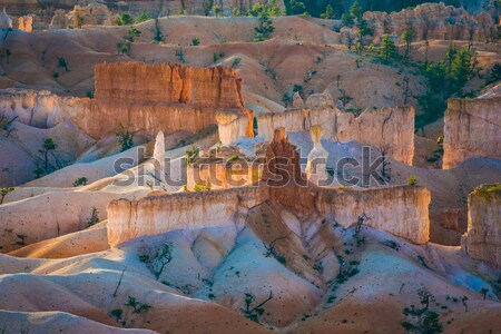 beautiful landscape in Bryce Canyon in sunrise  Stock photo © meinzahn