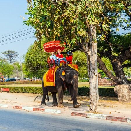Sokak erkek fil hayvan şemsiye Stok fotoğraf © meinzahn
