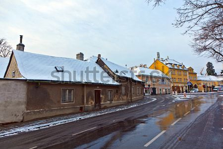 village of Grinzing in early morning light in Wintertime Stock photo © meinzahn
