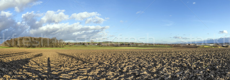 rural landscape with plowed fields and blue sky Stock photo © meinzahn
