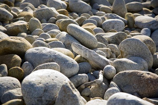 Pedras praia harmonia sol natureza fundo Foto stock © meinzahn