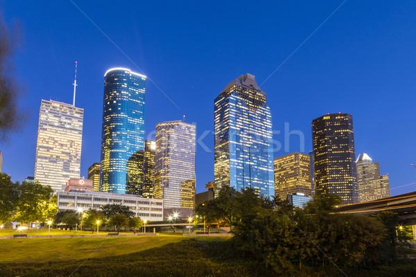 View on downtown Houston by night Stock photo © meinzahn