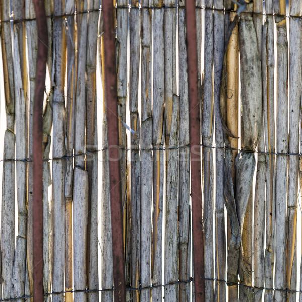 Abstract rot oude textuur muur Stockfoto © meinzahn