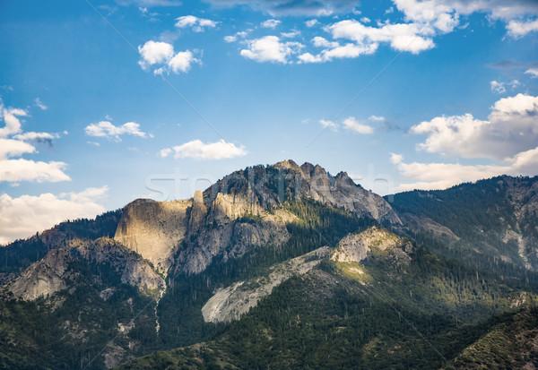 Widoku lasu sekwoja parku skał Zdjęcia stock © meinzahn