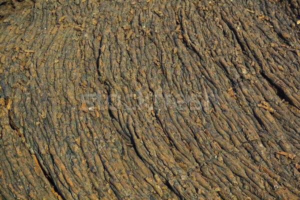石 与える 美しい 構造 ストックフォト © meinzahn
