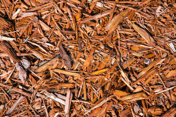 Background of natural wood shavings Stock photo © meinzahn