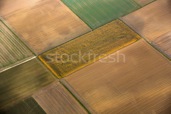 rural landscape with acre from hot air balloon  Stock photo © meinzahn