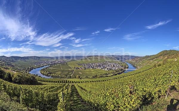 Fiume cappio Germania noto vino sole Foto d'archivio © meinzahn